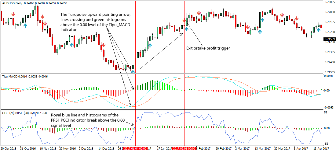 Best daily chart forex strategy