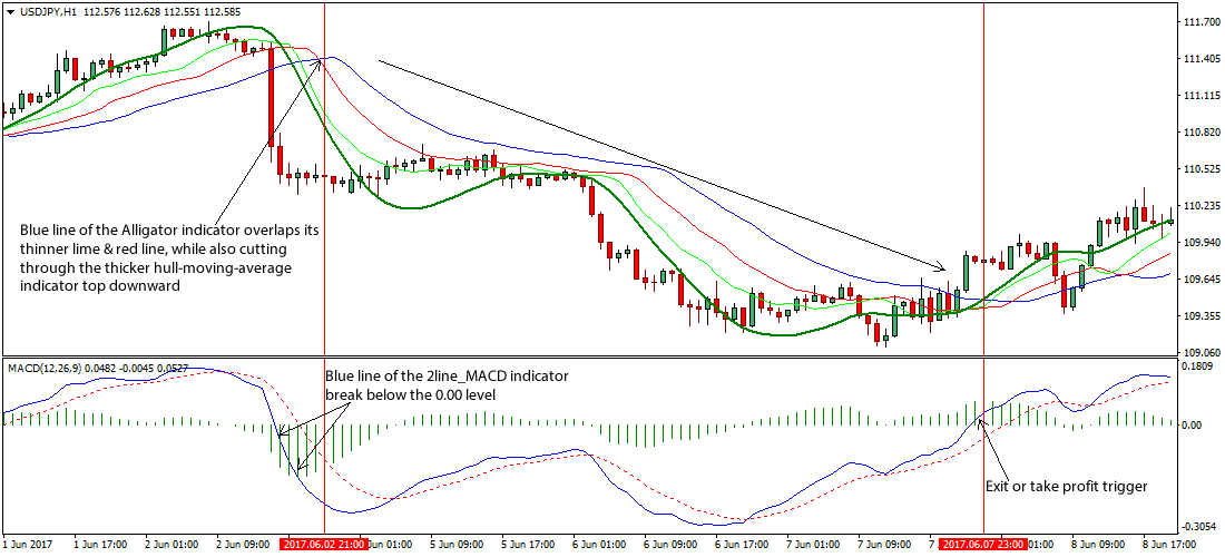 What Is The Alligator Indicator? How Do You Trade It In Forex?