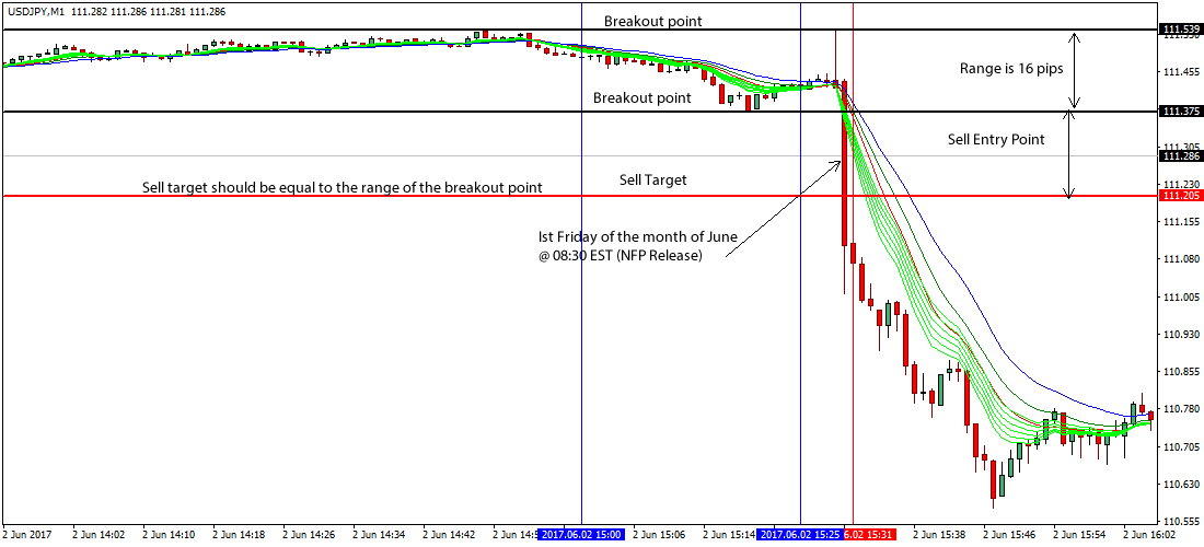 Straddle trading strategy forex