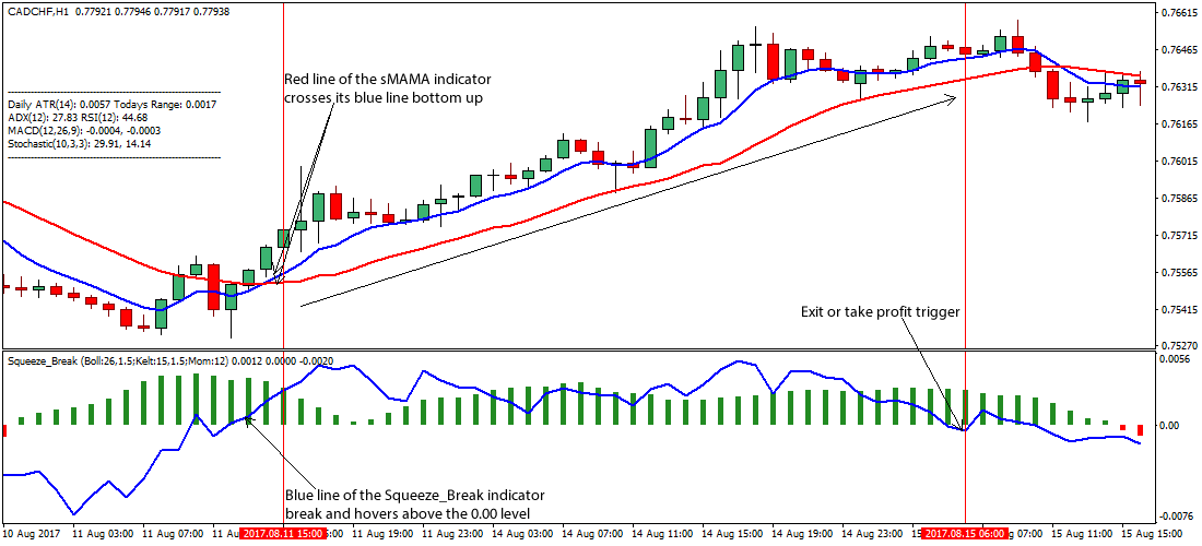 Forex squeeze indicator pairs view